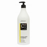 CARIN COLOR ESSENTIALS NEW STABILIZING SHAMPOO-950 ML