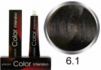 Carin  Color Intensivo nr 6,1 donkerblond as