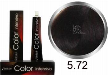Carin Color Intensivo Nr. 5,72 hellbraunes Kastanien violett