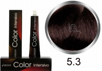 Carin Color Intensivo No. 5.3 light brown gold