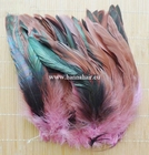 Feather pheasant, color: Pink